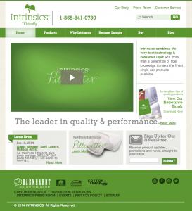 Example of homepage lead generation - Intrinsics.net